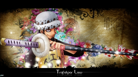 One piece Law