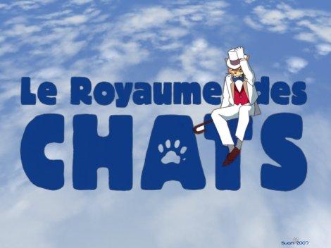 Le_royaume_des_chats_01