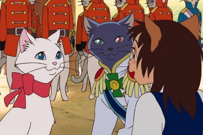 Le royaume des chats 3geekettes otakuspace - Chat dessin manga ...