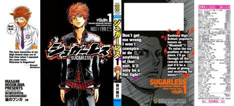 SugarlessHOSOKAWAMasami10208
